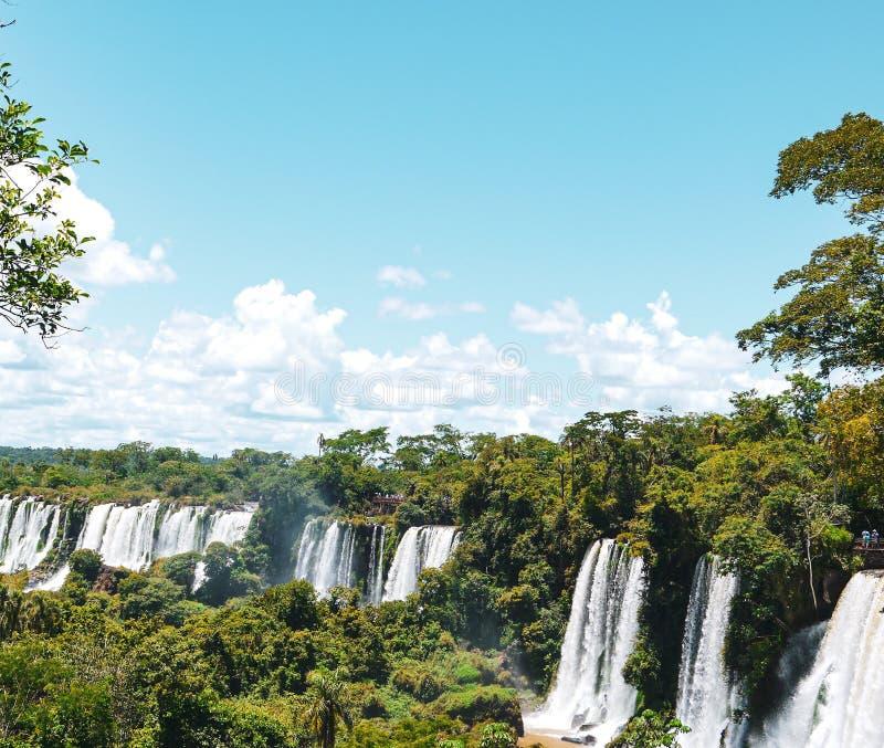 巴西和阿根廷的边界的伊瓜苏瀑布在阿根廷 库存照片