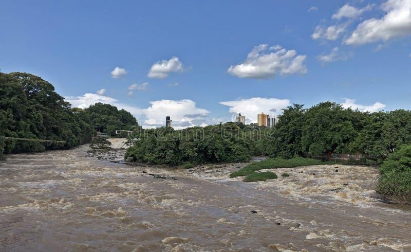 巴西圣保罗皮拉西卡巴 库存照片