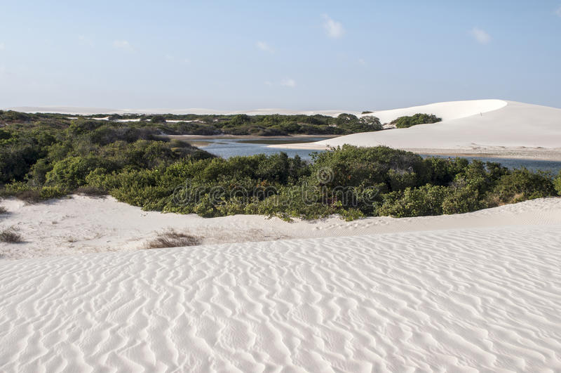 巴西沙丘lencois maranheses沙子 免版税图库摄影