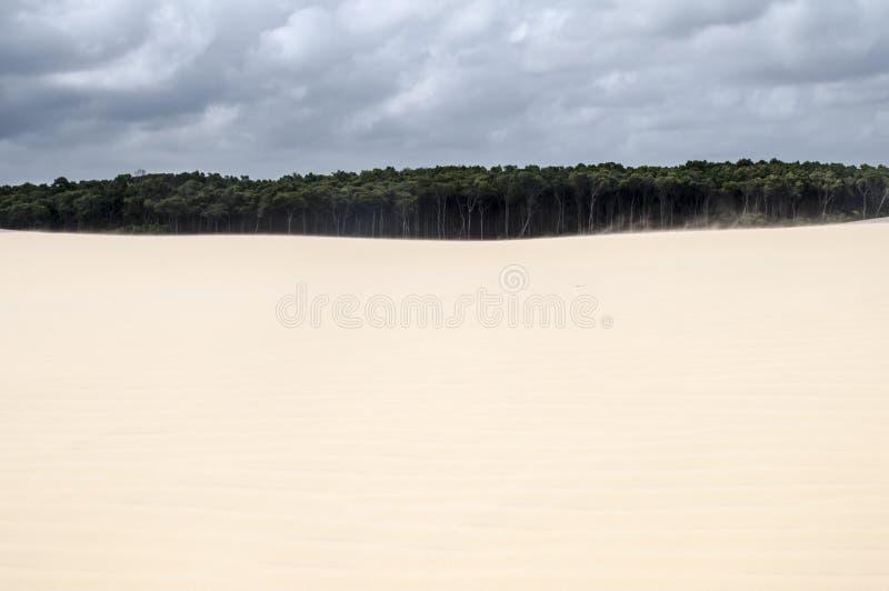 巴西沙丘lencois maranheses沙子 免版税库存图片