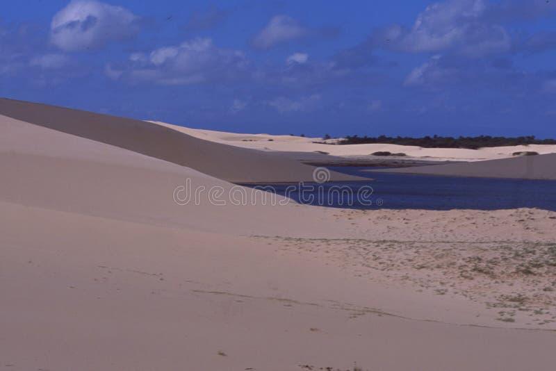 巴西:Sanddunes在Maranhao Lencois 图库摄影