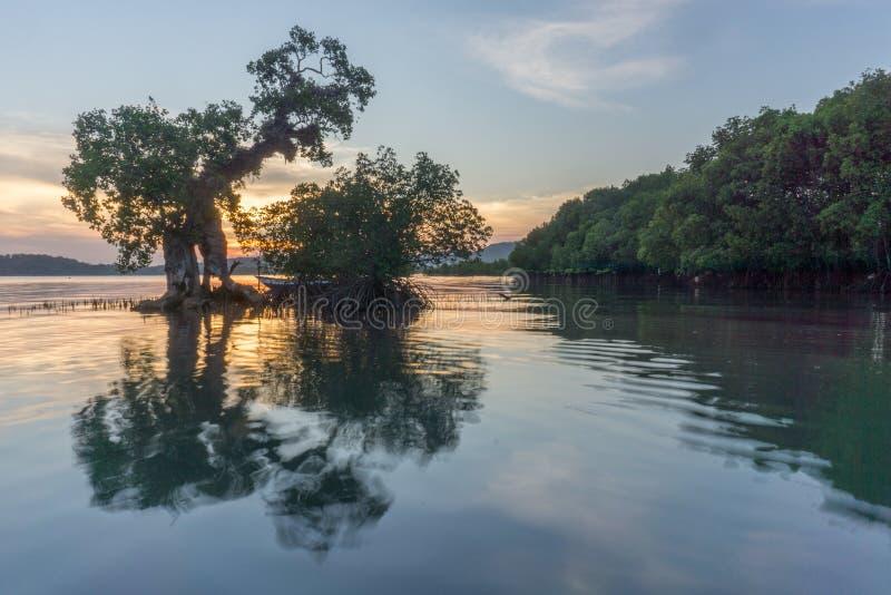 巴韦安岛, Gresik,印度尼西亚 免版税库存照片