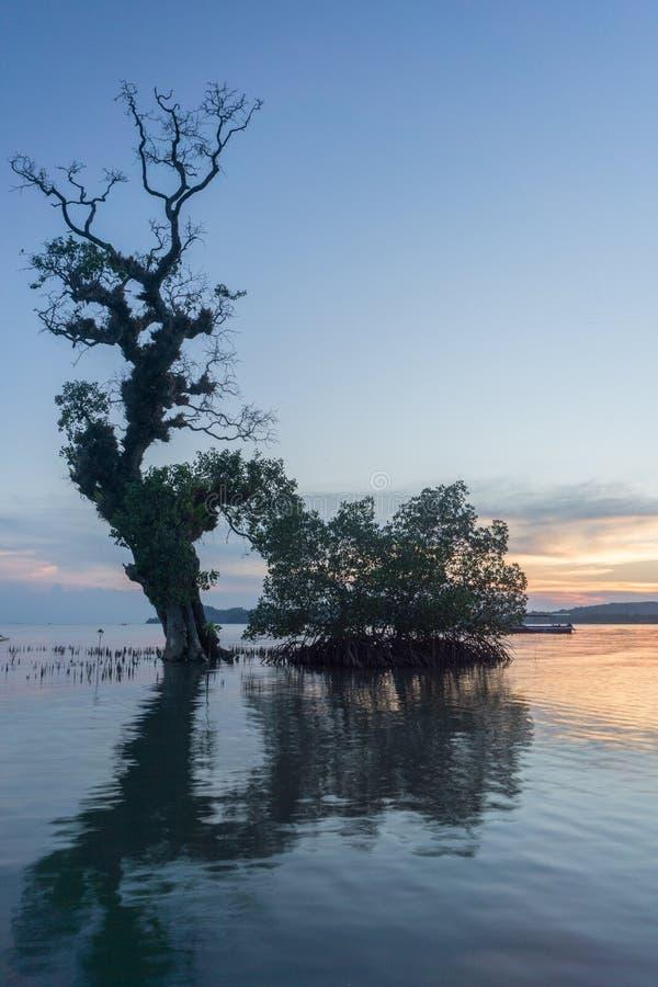 巴韦安岛, Gresik,印度尼西亚 库存图片