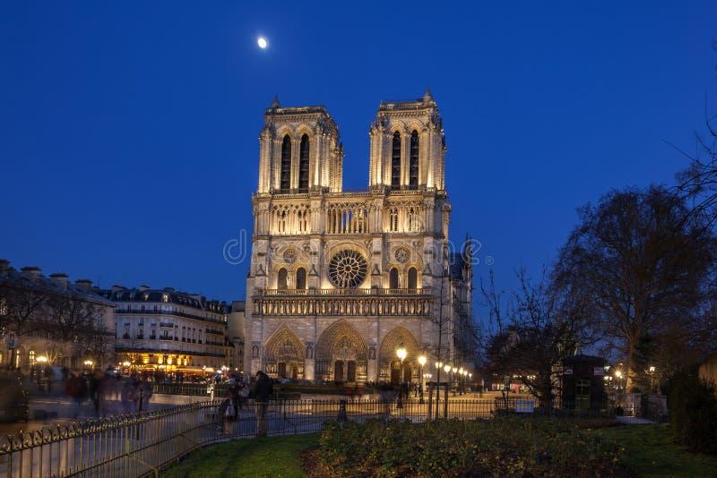 巴黎圣母院在巴黎在晚上,法国 免版税库存照片