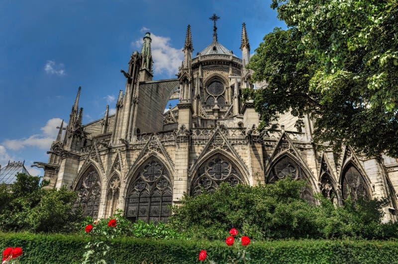 巴黎圣母院在有红色花的春天 免版税库存照片