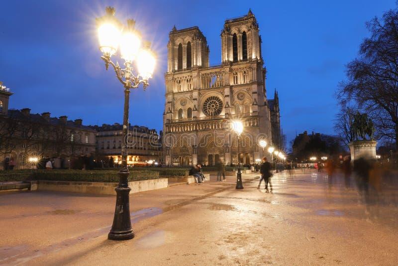 巴黎圣母院多雨晚上,巴黎,法国 库存照片