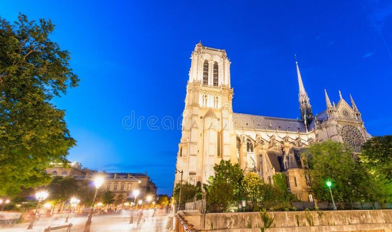 巴黎圣母院,巴黎-法国的惊人的夜颜色 免版税库存照片