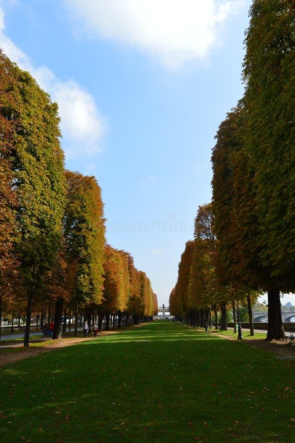 巴黎大道 免版税库存图片