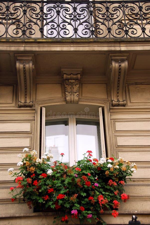 巴黎视窗 免版税库存图片