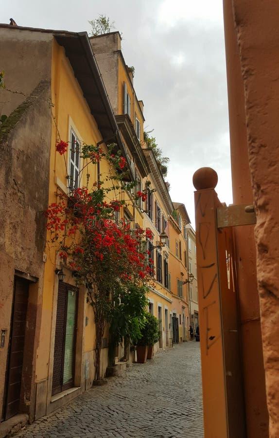 巷道在Trastevere,罗马,意大利 库存照片
