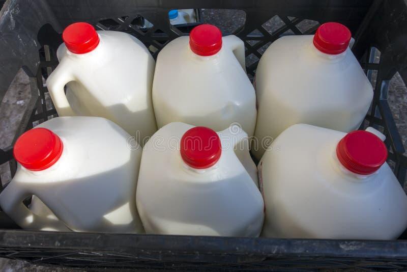 市场加仑牛奶交付 免版税库存照片