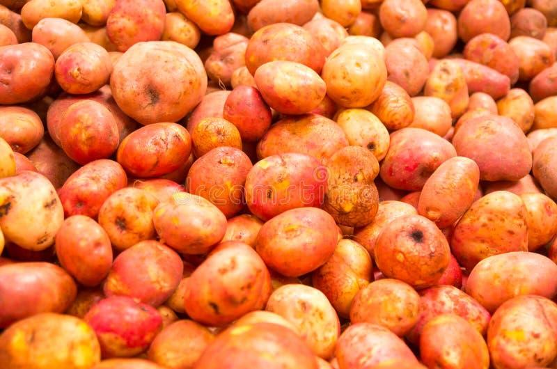 市场土豆 免版税库存照片