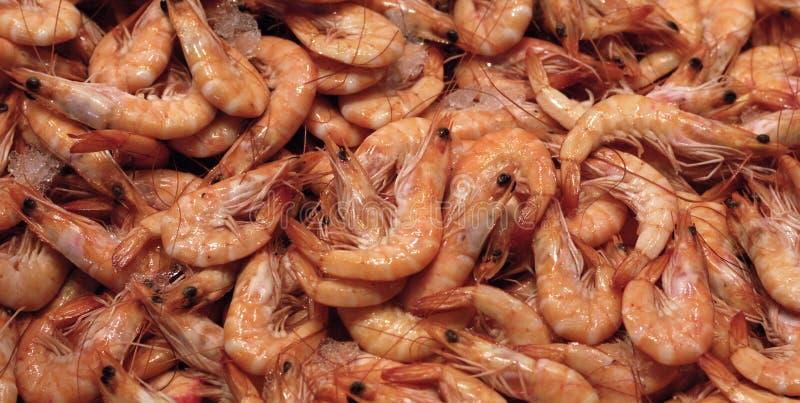 市场虾 库存照片