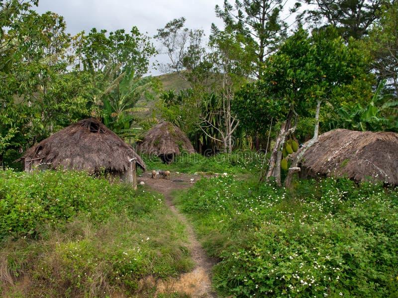 巴布亚省的,印度尼西亚一个传统村庄 免版税库存图片