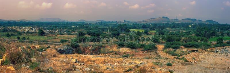 布什全景干燥丛林在印度 免版税库存图片