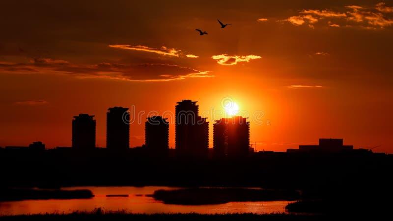 布加勒斯特地平线Asmita庭院大厦,在日落以后,鸟瞰图 免版税库存照片