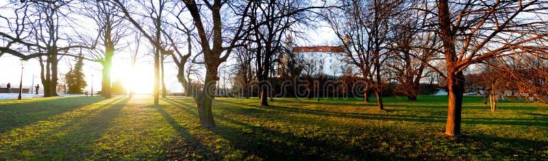 布拉索夫城堡 库存图片