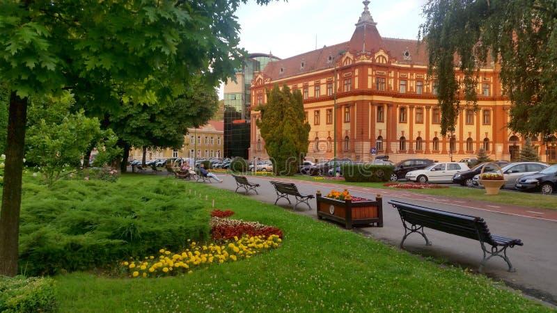 布拉索夫郡议会大厦在特兰西瓦尼亚,罗马尼亚 库存图片