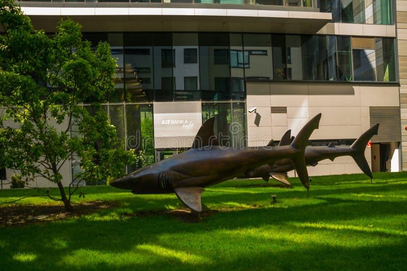 布拉索夫,斯洛伐克:三个财政鲨鱼和城市公园 鱼的雕塑是鲨鱼的一座异常的纪念碑 库存照片