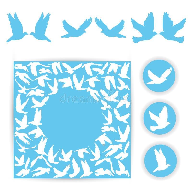 布景喜帖 在蓝色背景的白色鸠 Silho 向量例证