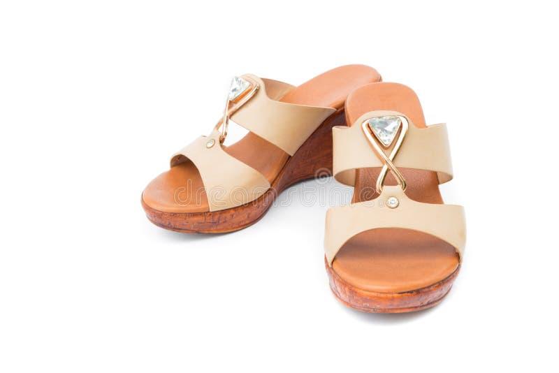 布朗停顿在白色背景、衣物和fashio的鞋子颜色 免版税库存照片