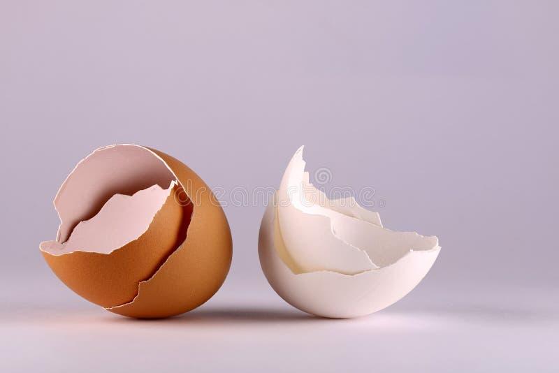 布朗和白鸡蛋壳 图库摄影