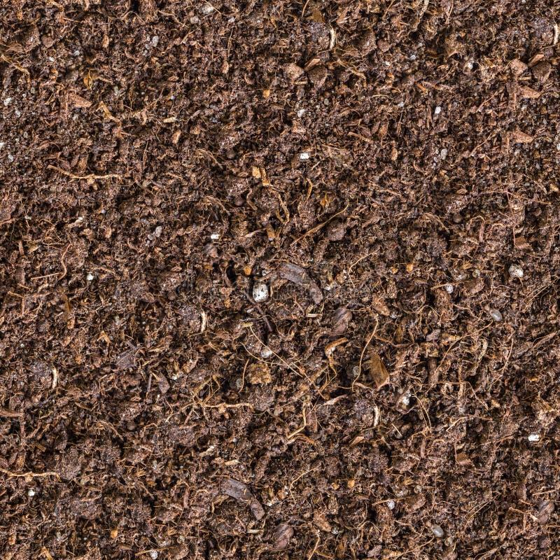 布朗土壤无缝的纹理。 库存照片