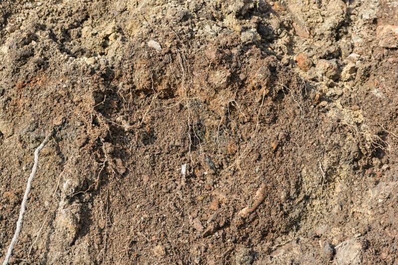 布朗土壤纹理 图库摄影