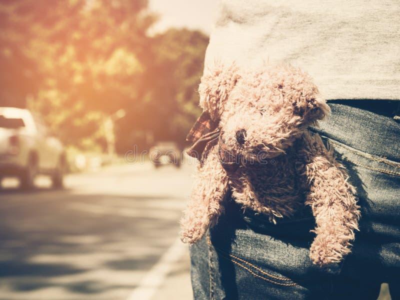 布朗在一个人的玩具熊玩偶有蓝色牛仔裤的装在口袋里在乡下公路和光 库存照片