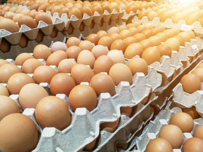布朗在蛋盘子的鸡鸡蛋,在包裹的新鲜的未加工的鸡鸡蛋待售在超级市场 免版税图库摄影