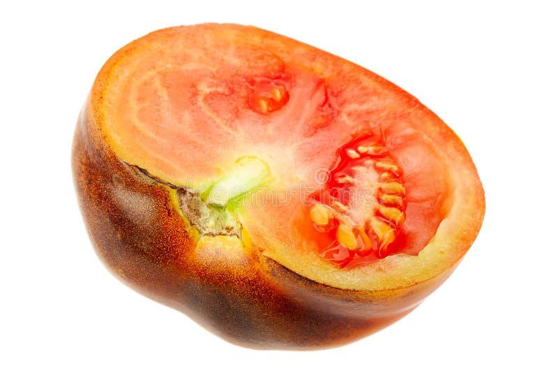 布朗大蕃茄 免版税库存照片