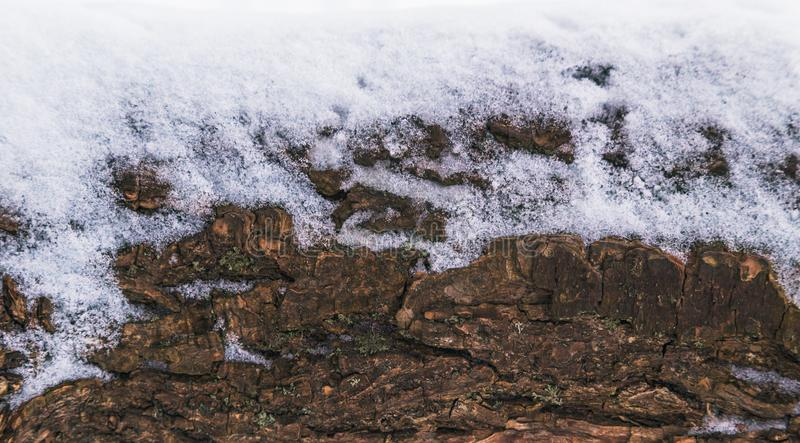 布朗木纹理有雪圣诞节背景 库存照片