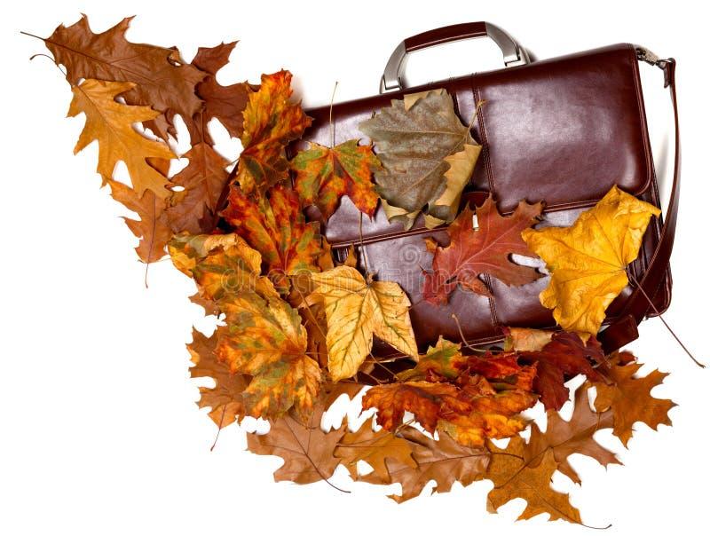 布朗用皮革包盖公文包,并且多色的秋天烘干叶子 免版税图库摄影