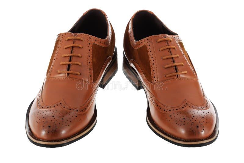 布朗皮革和绒面革在与裁减路线的白色背景隔绝的人的鞋子 库存图片