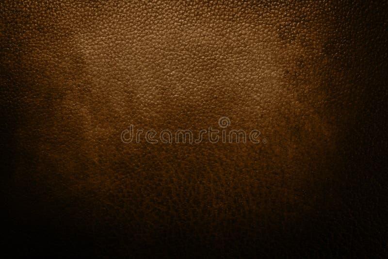 布朗皮革 免版税库存图片
