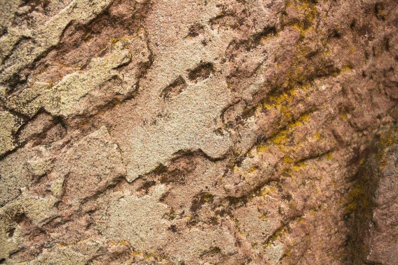 布朗石头纹理背景 库存照片
