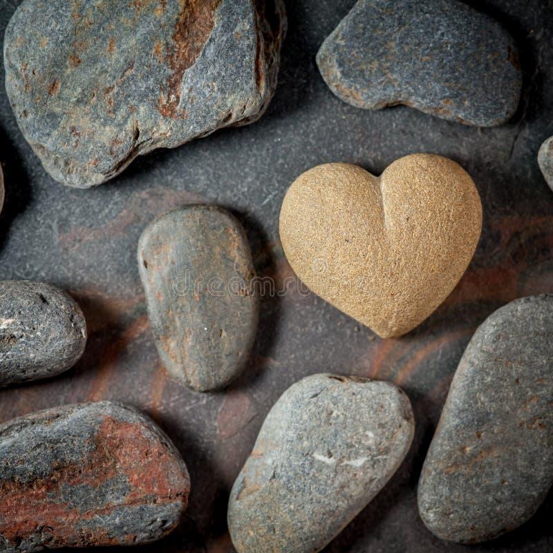 布朗砂岩心脏 库存照片