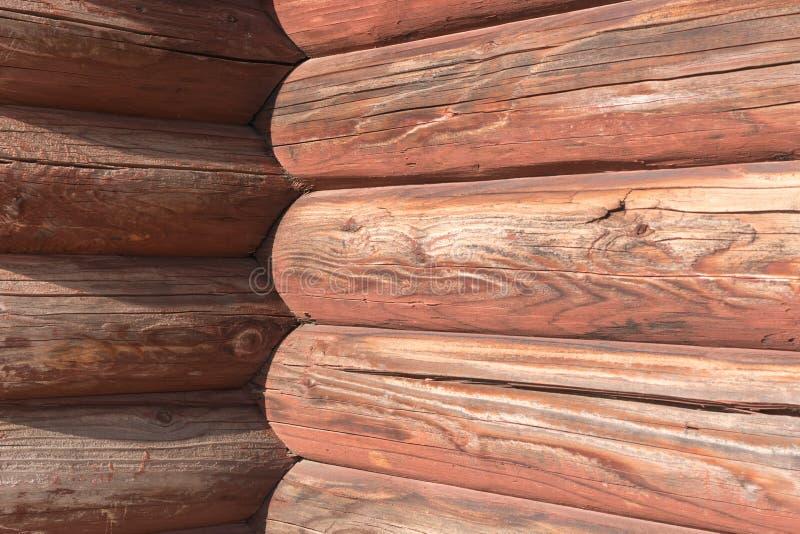 布朗背景ola杉木木墙壁 免版税库存照片