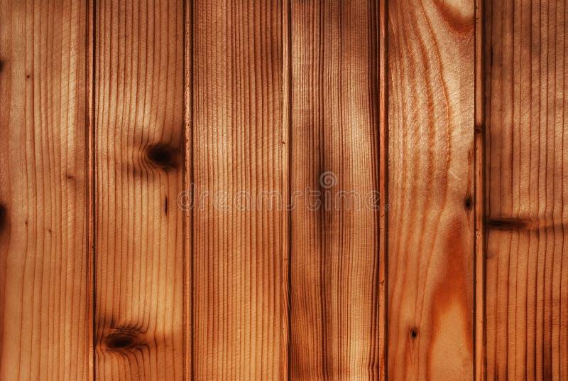 布朗自然木背景 免版税图库摄影