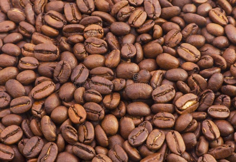 布朗芬芳咖啡豆 免版税库存照片