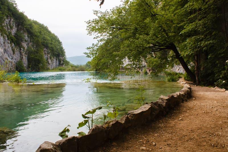 布朗走道围拢与水山绿草和树在国家公园Plitvice湖在克罗地亚 免版税库存图片