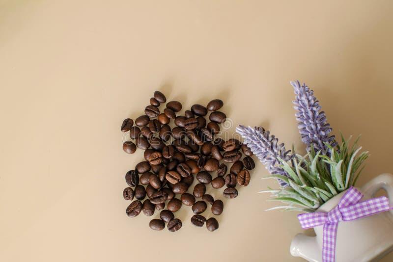 布朗阿拉伯咖啡咖啡豆用在轻的背景的淡紫色 免版税图库摄影