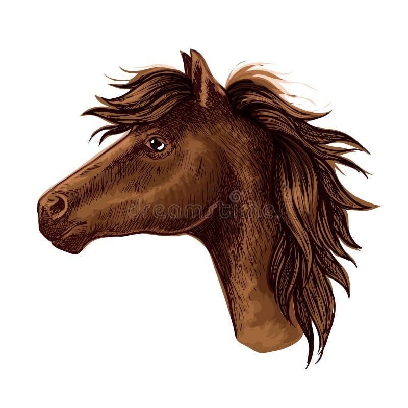 布朗阿拉伯马动物头 向量例证