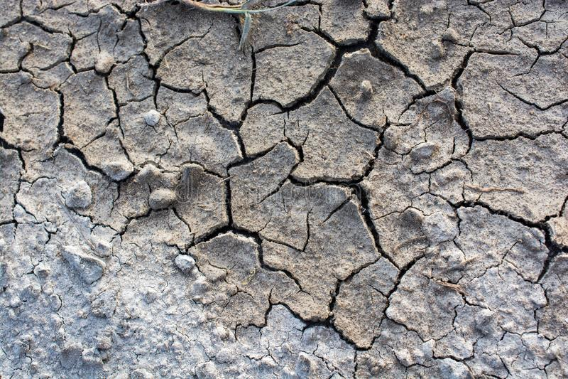 布朗颜色干燥破裂的泥泞的地球 免版税库存照片