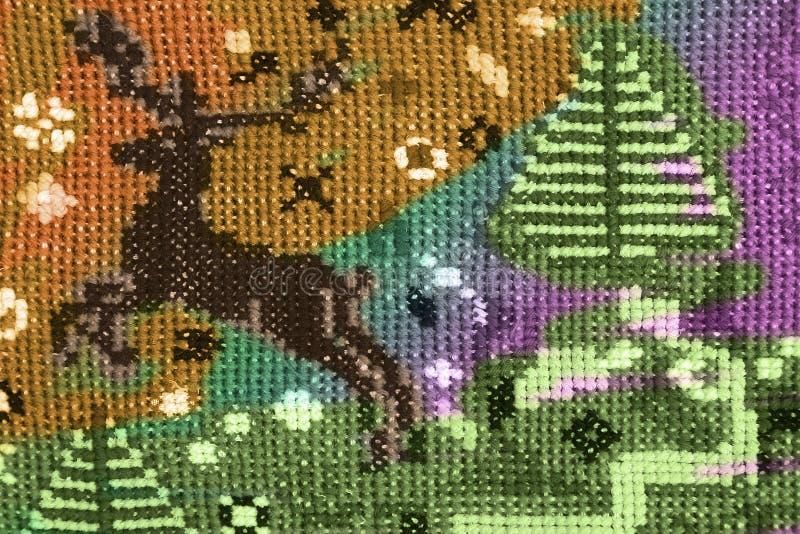 布朗鹿4 库存图片