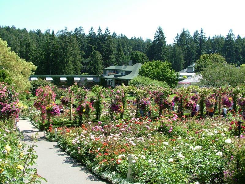 布查德花园的花园 免版税库存照片
