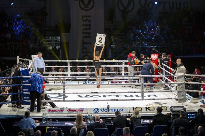 布罗瓦里 乌克兰, 14 11 2015个圆环女孩是在中心,并且拳击手是在拳击台里面的角落 免版税库存图片