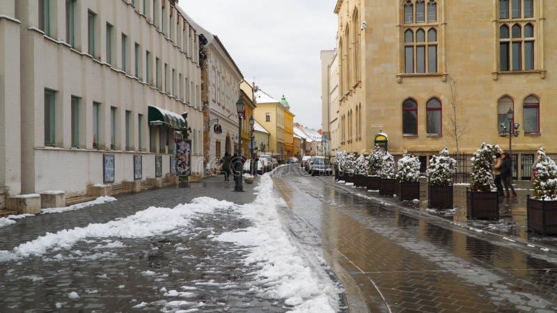 布达佩斯匈牙利积雪的街道  库存照片
