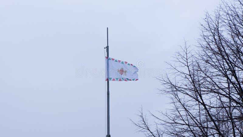布达佩斯匈牙利03 15 2019徽章布达佩斯的和旗子在风飞行 库存图片
