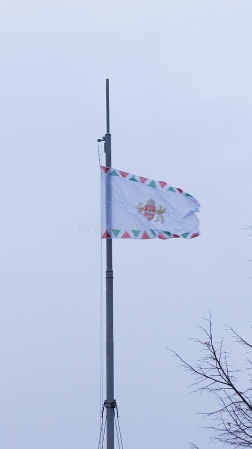 布达佩斯匈牙利03 15 2019徽章布达佩斯的和旗子在风飞行 库存照片